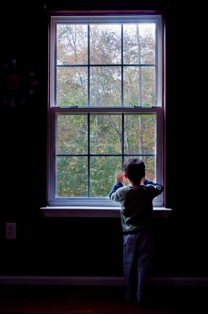 jongen raam Allicat1881
