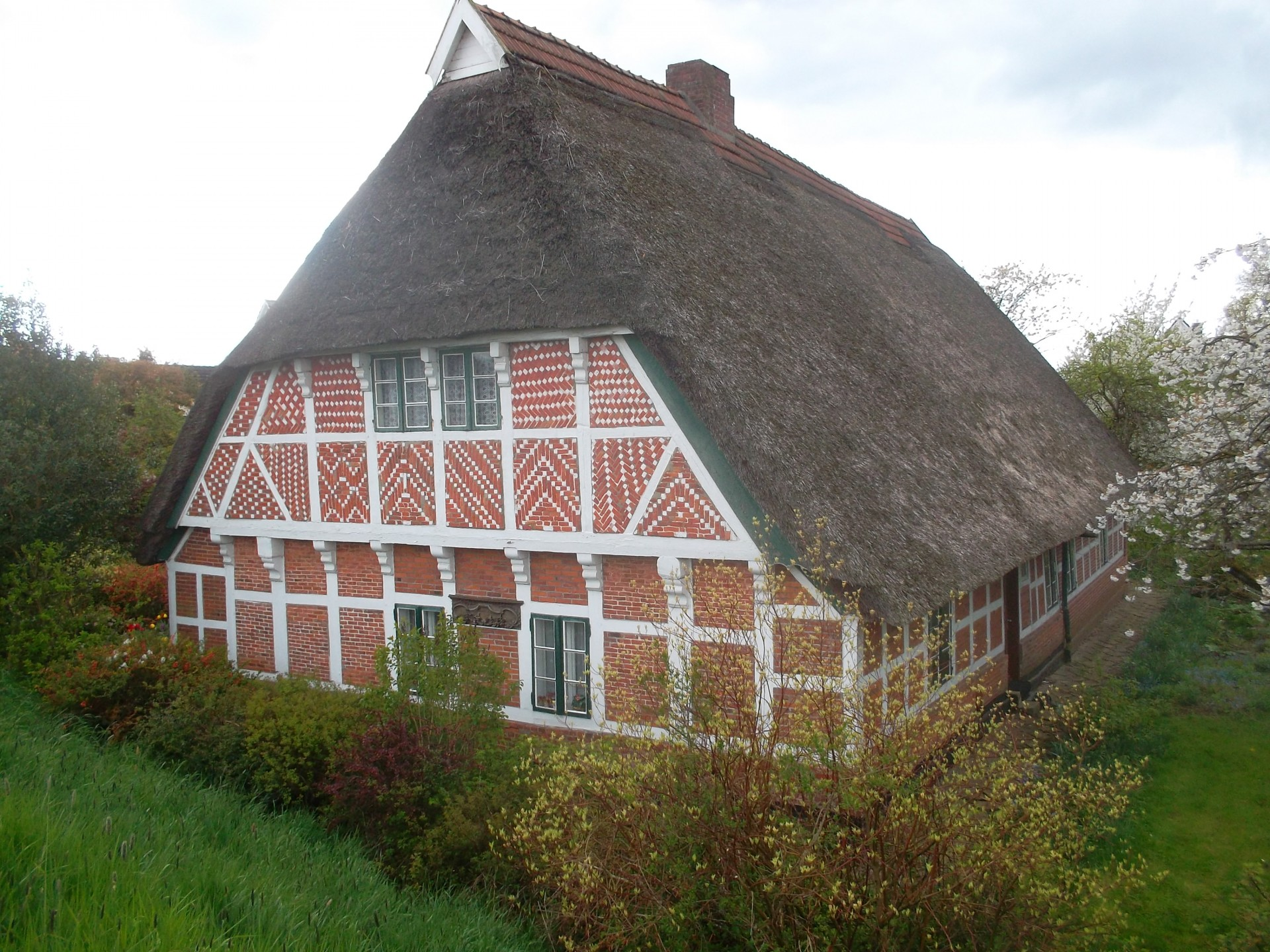 Thatched cottage vertaling
